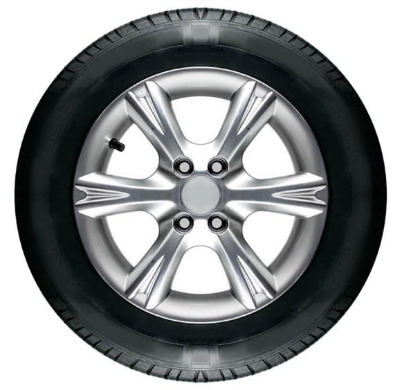 ruedas-y-neumaticos